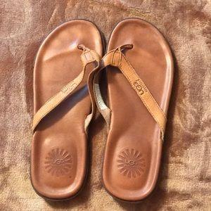 Men's Ugg sandals